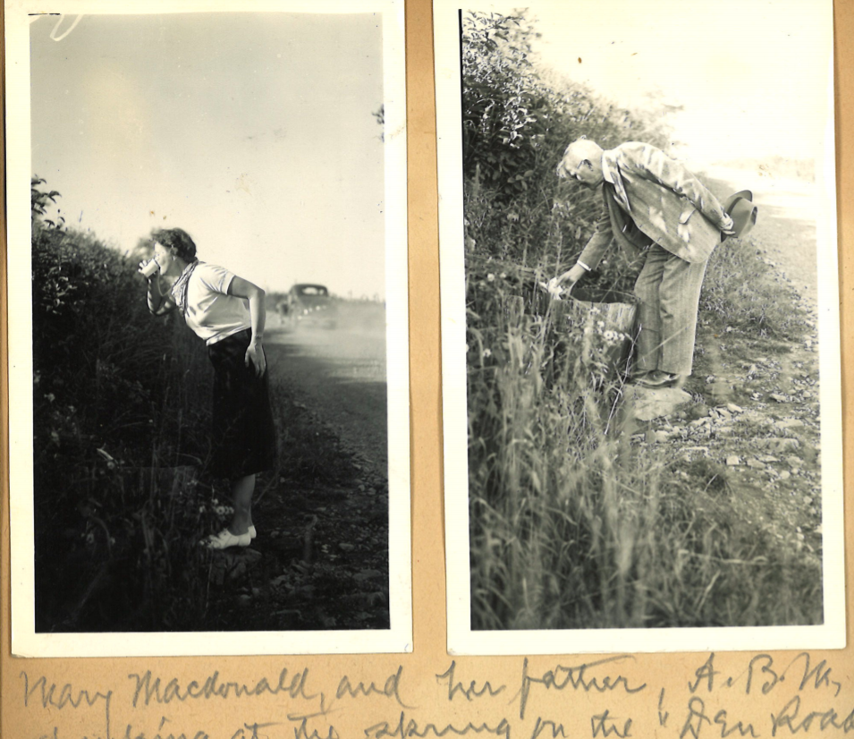 Two black and white images of the McDonalds drinking at a spring by a gravel road